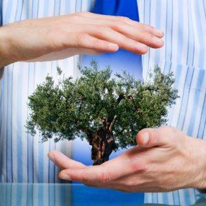 MBA em Gestão Ambiental com ênfase em Auditoria e Perícia